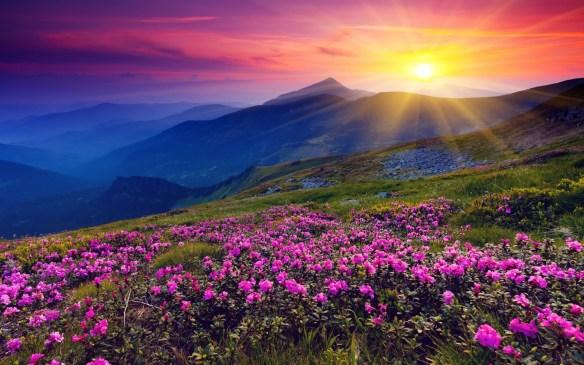 sun-shining-over-hills-1920x1200-wallpaper-amanecer-en-las-colinas-y-montañas-